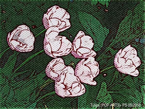 Tulips - Pop Art