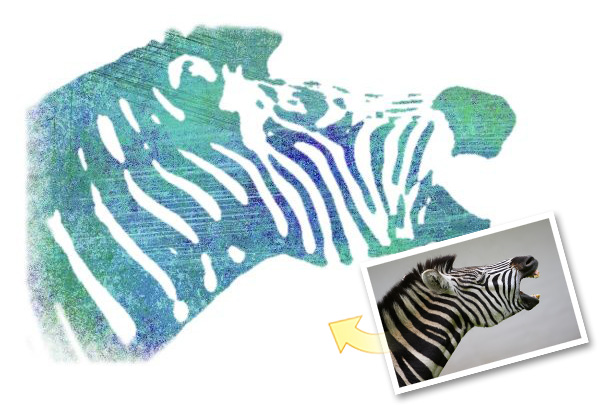Zebra photo with Stenciler #6